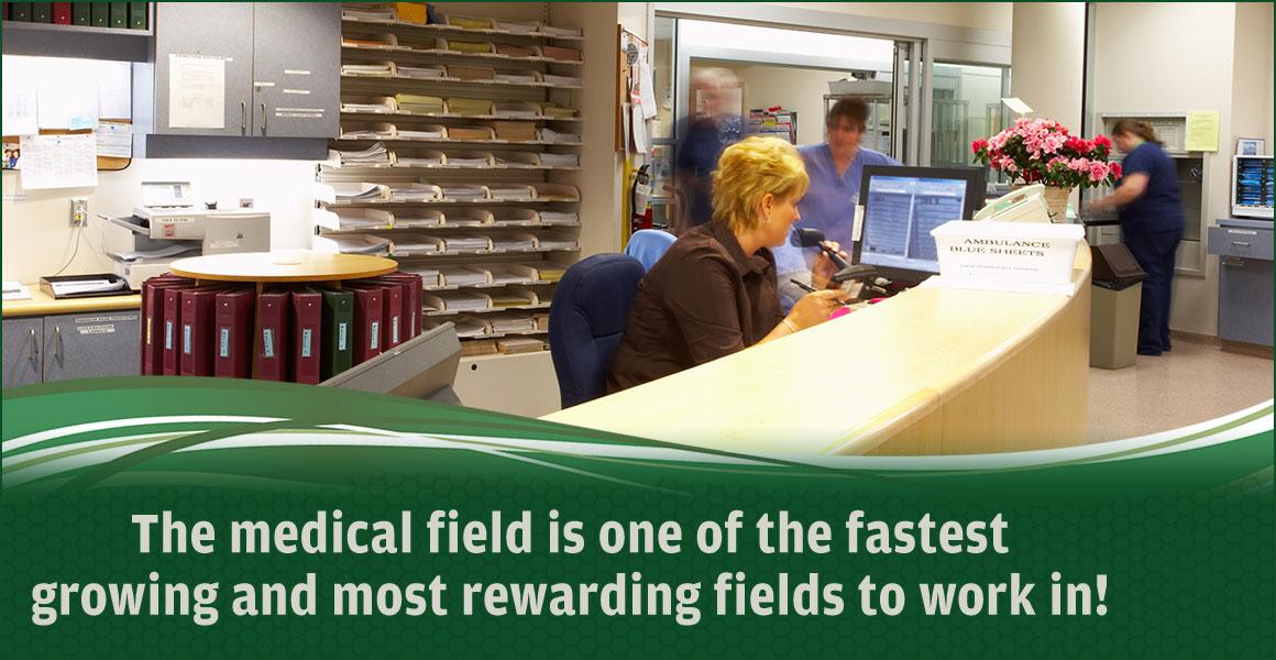 MedicalField-Med-STL